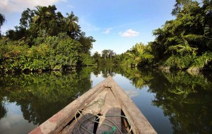 Wooden boat floating down the La'fau River in beautiful tropical surroundings, Nias Island, Indonesia