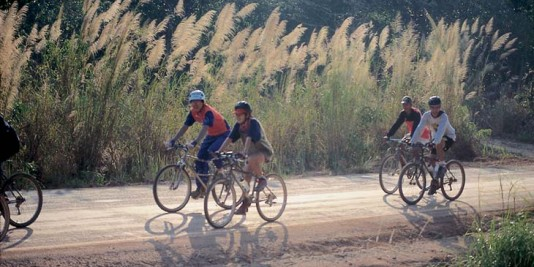 Mountain bike tour participants ride their bikes in natural surroundings in Thailand