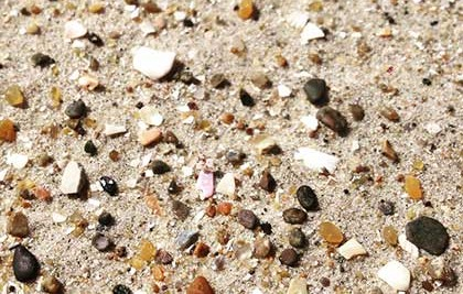 Close-up of sand from a beach showing different sizes, shapes, and colors of the grains.