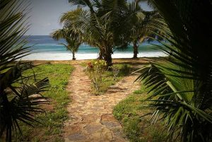 Hideout Lodge Butre Ghana sea view